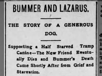 Bummer & Lazarus