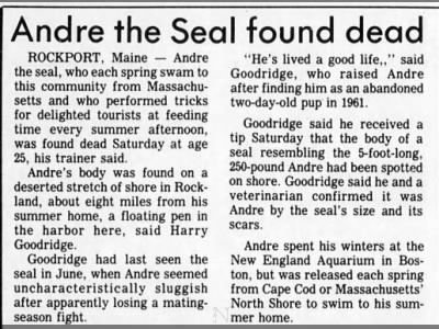 Andre the Seal found dead