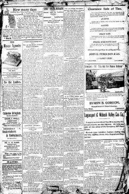 Logansport Pharos-Tribune from Logansport, Indiana on July 4, 1896 · Page 3