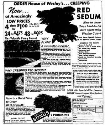 Sunday Gazette-Mail from Charleston, West Virginia on May 26, 1974 · Page 107