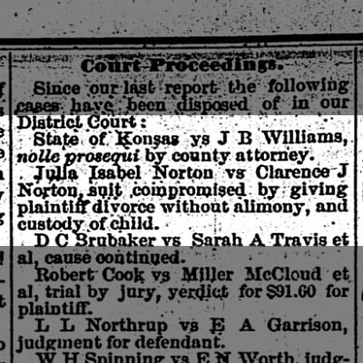 Julia Isabel Norton vs Clarence J Norton divorce The Iola Register 31 March 1882 Page 4