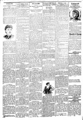 Logansport Pharos-Tribune from Logansport, Indiana on March 8, 1894 · Page 2