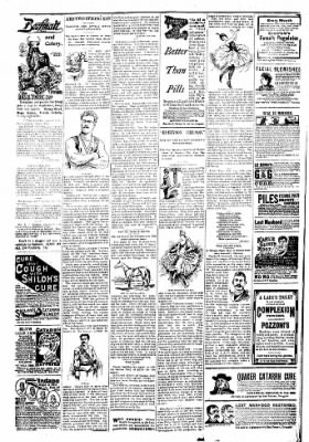 Logansport Pharos-Tribune from Logansport, Indiana on March 10, 1894 · Page 6