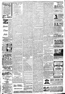 Logansport Pharos-Tribune from Logansport, Indiana on April 8, 1894 · Page 6